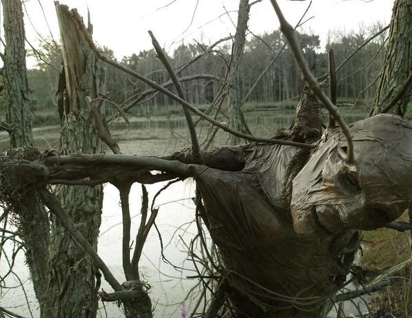 scarecrow11