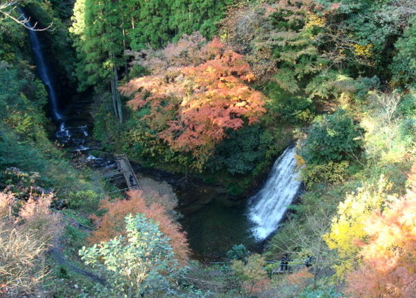 Maboroshi_falls_yorokeikoku_0812