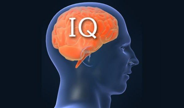 IQが高い