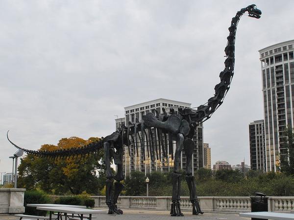 1280px-FMNH_Brachiosaurus
