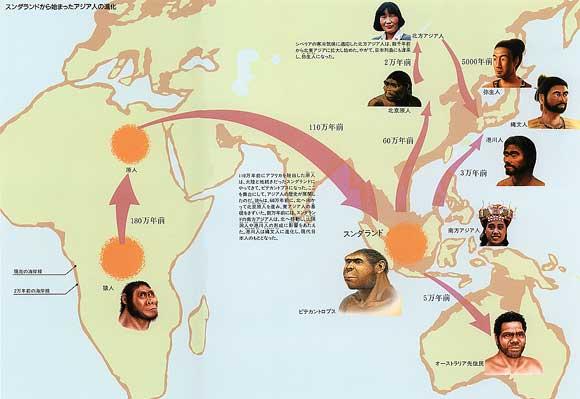 アジア人のルーツ