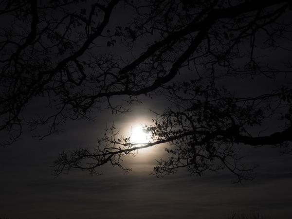 moon-1024914_640