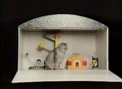 シュレディンガーの猫のようなおもしろい思考実験教えてください