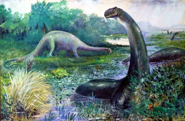 l_sk_brontosaurus_04