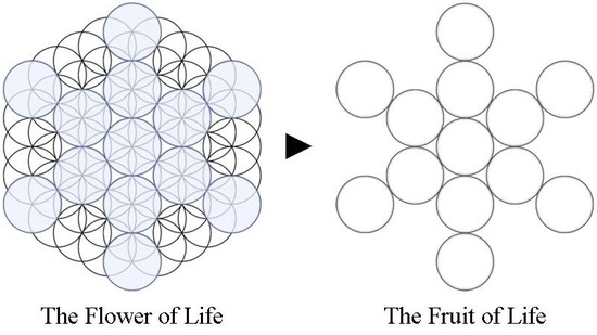 Fruit-of-Life_Stages_61-circles-to-13-circles_800px