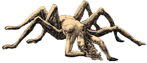 800px-Arachne
