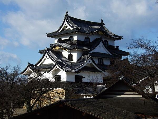 800px-Hikone_castle5537