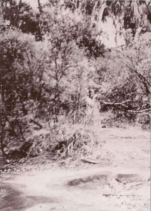 1898eae7