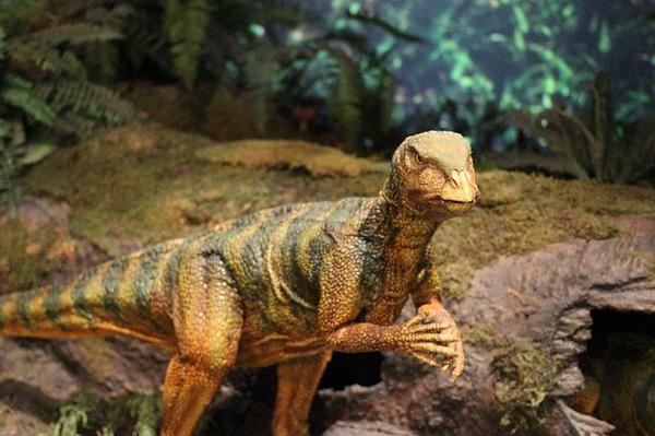 dinosaur-597148_640