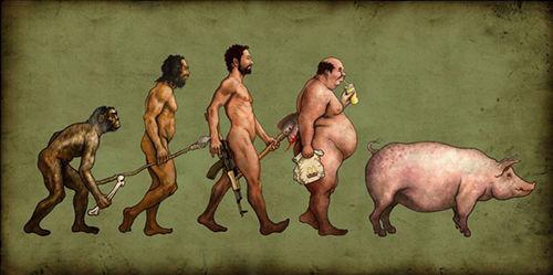 「アカン…進化の方向間違えたわ」って感じの生物