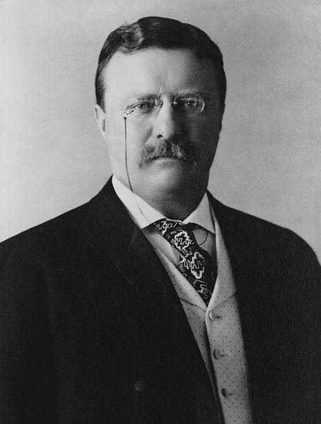 454px-President_Theodore_Roosevelt,_1904