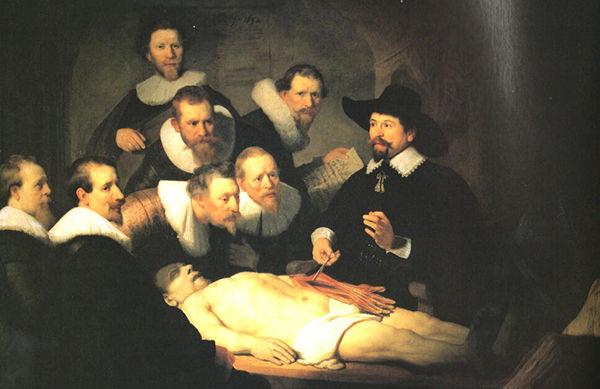医学部の解剖実習辛すぎるンゴ