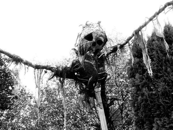 scarecrow19
