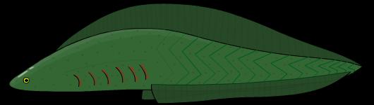 Myllokunmingia