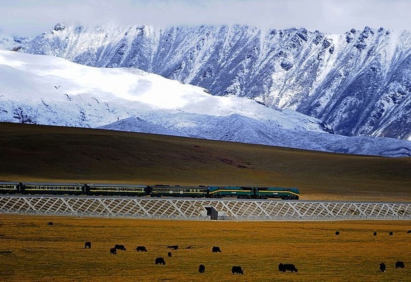 Qinghai-Lhasa-Railway-is-one-of-the-worlds-great-train-journeys
