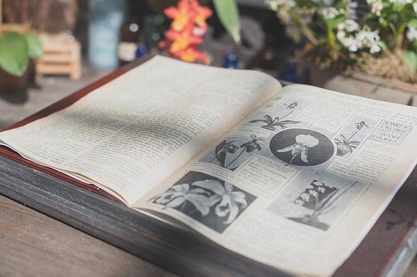 book-1245708_640
