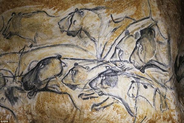 ショーヴェ洞窟の画像 p1_34