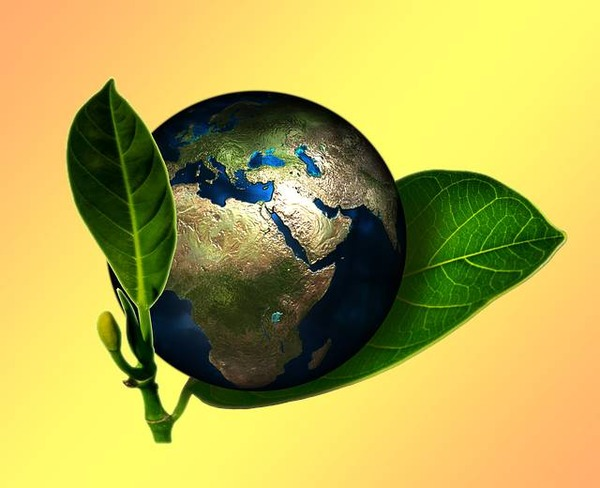 earth-661447_640