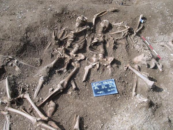 Massacred-10th-Century-Vikings-777x583