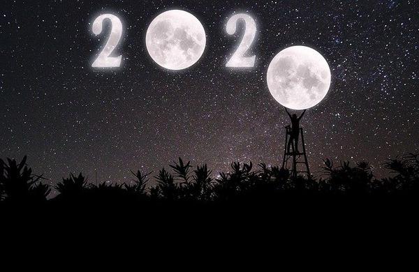 new-year-4768119_640