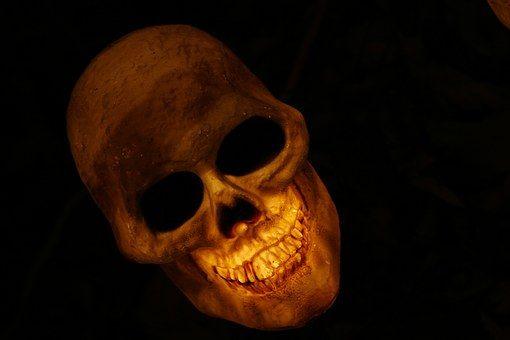 skull-570975__340