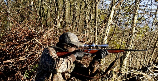 hunting-3781222_960_720