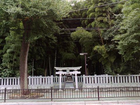 Yawatano-yabusirazu