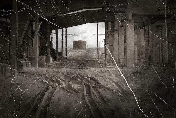 shutterstock_198309662