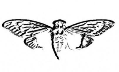 Cicada_3301_logo