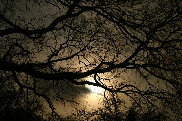darkness-1232724_640