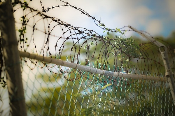 barbed-wire-600471_640