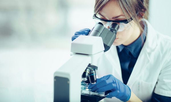 京都大学、iPS細胞から癌細胞を侵食するゾンビキラーT細胞の作成に成功