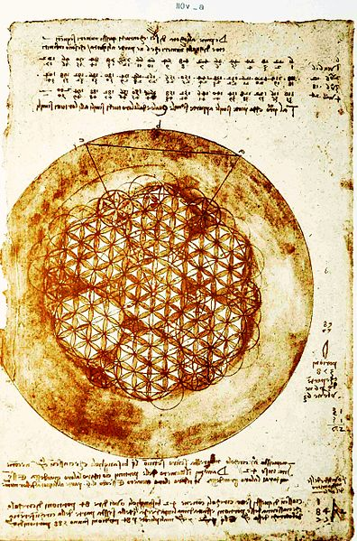 Leonardo_da_Vinci_–_Codex_Atlanticus_folio_307v