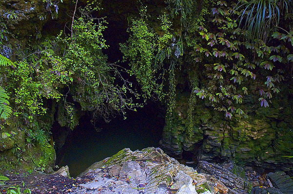 800px-Waitomo_Cave_Entrance_n