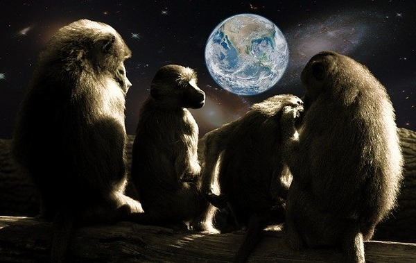 planet-of-the-apes-679911_640
