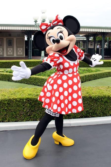 ミニーマウスの画像 p1_34