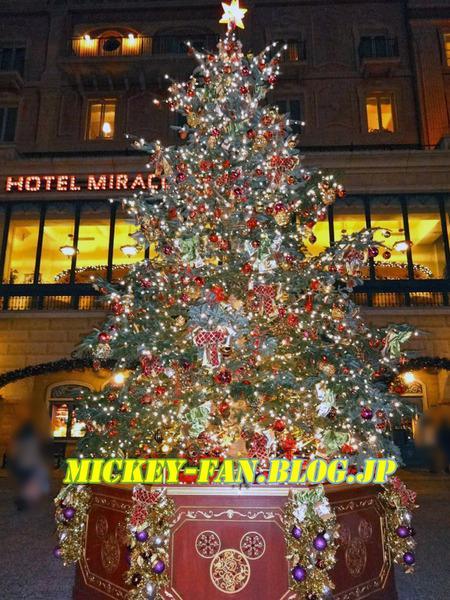 シー・クリスマスツリー - 06