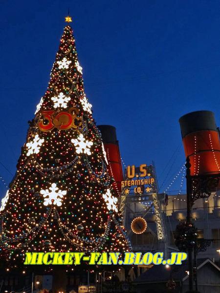 シー・クリスマスツリー - 08