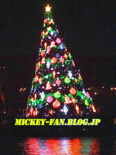 シー・クリスマスツリー - 18