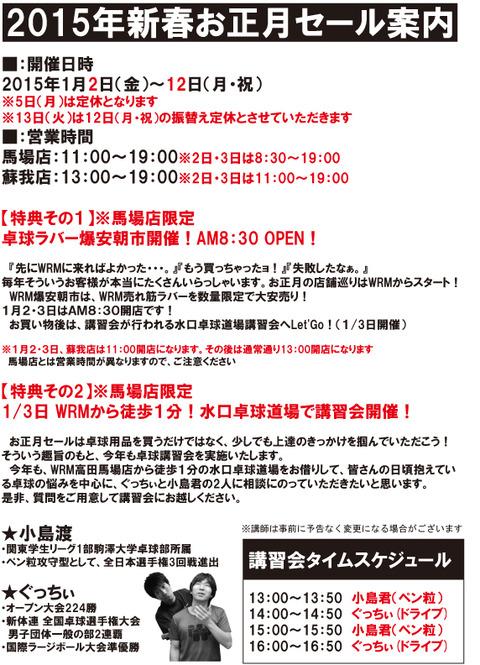 2015年正月DMページ2