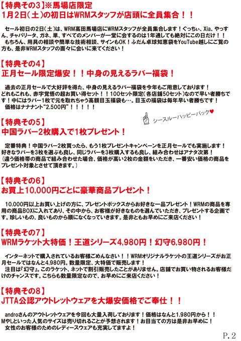 2016年正月DM(ページ2)