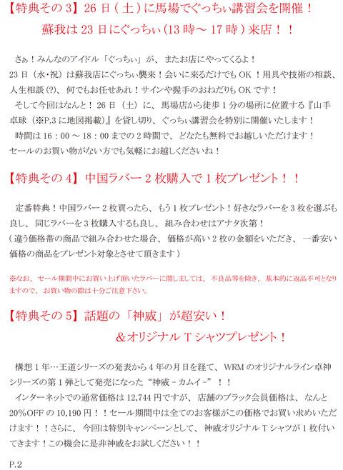 2015年オータムセールDM(ページ2)
