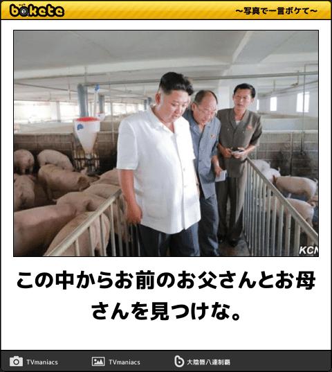 金正恩が豚を視察