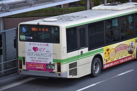DSC_6694_R