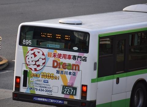 DSC_6070_R