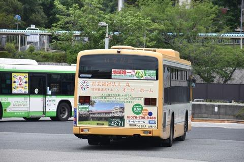 DSC_0998_R