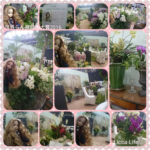 PhotoGrid_1455780440617