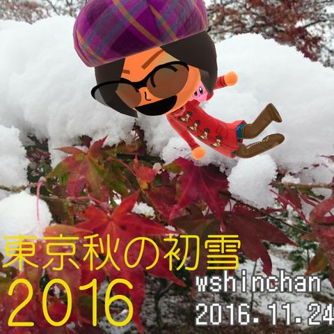 20161124172855