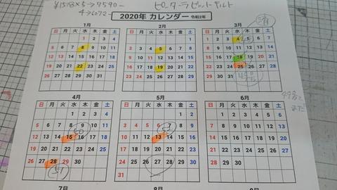 DSC_8244