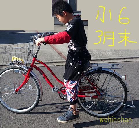 20170131asahibike02001